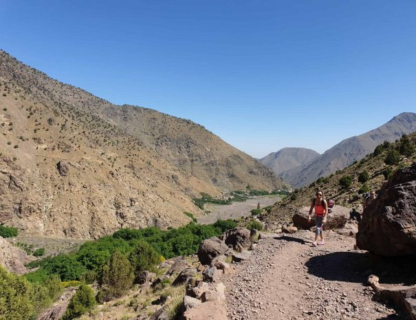 Day Trips From Marrakech by Moroccan Food Tour - 5