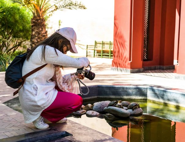 Photography Tours By Moroccan Food Tour 12