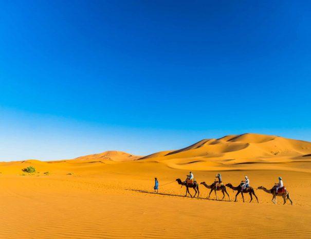Moroccan Sahara Desert Trip 15